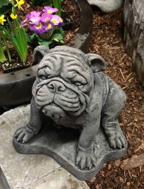 Concrete Works Statuary Inc Medium Siting Bulldog